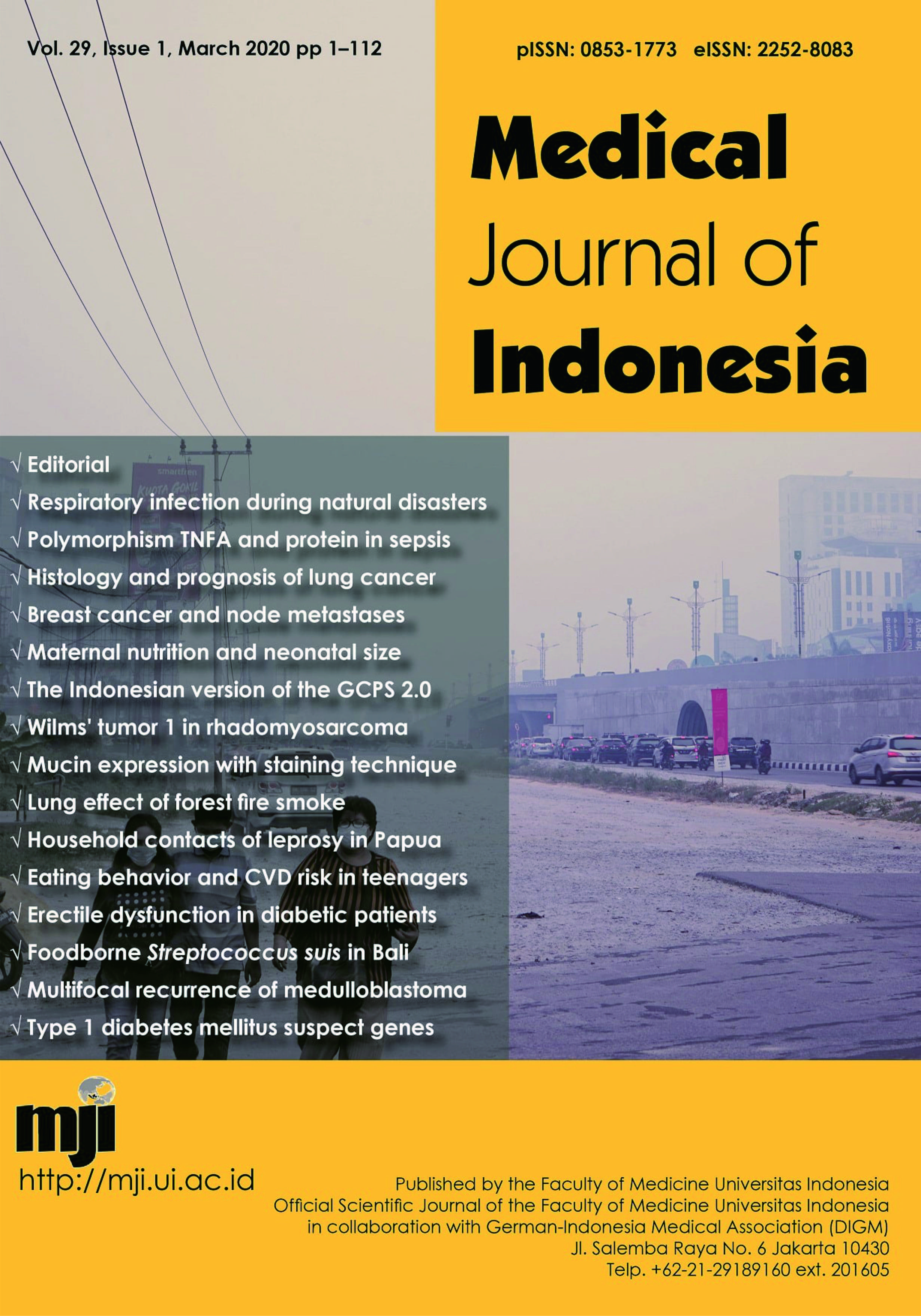 Epidemiology Of Erectile Dysfunction In Men With Diabetes Mellitus A Study In A Primary Health Care Center In Indonesia Medical Journal Of Indonesia